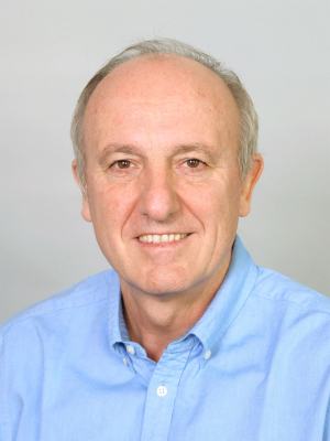 Prof. Dr. Daniel Loss